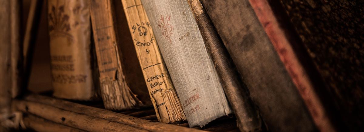 Regal mit alten Büchern, Antiquitäten und Trödel verkaufen im Raum Bad Berleburg, Schmallenberg oder Winterberg